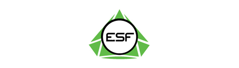 Event-Ankünder: Electronic Sports Festival